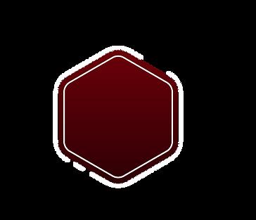 ALTOFOCUS-element-2.png