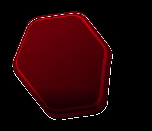 ALTOFOCUS-element-1.png