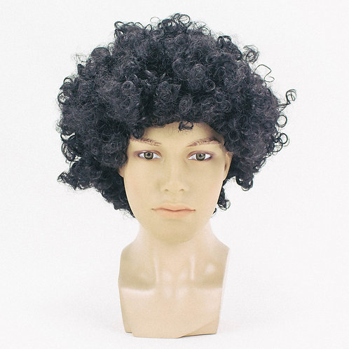 Retro Afro PP12 Synthetic Wig