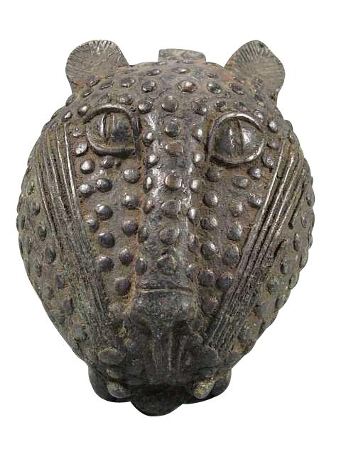 Leopard Head