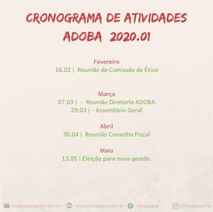 Cronograma ADOBA 2020.01