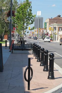 Wyandotte Street Tree Rails