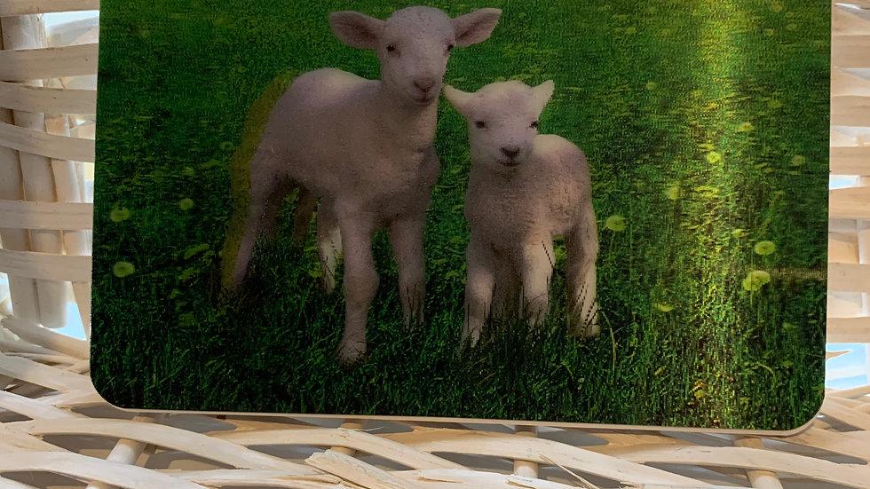 Holographic Lamb Plain Notebook