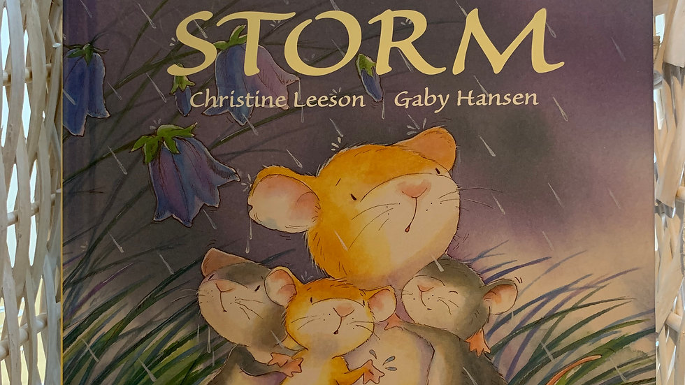 Molly and the Storm Book
