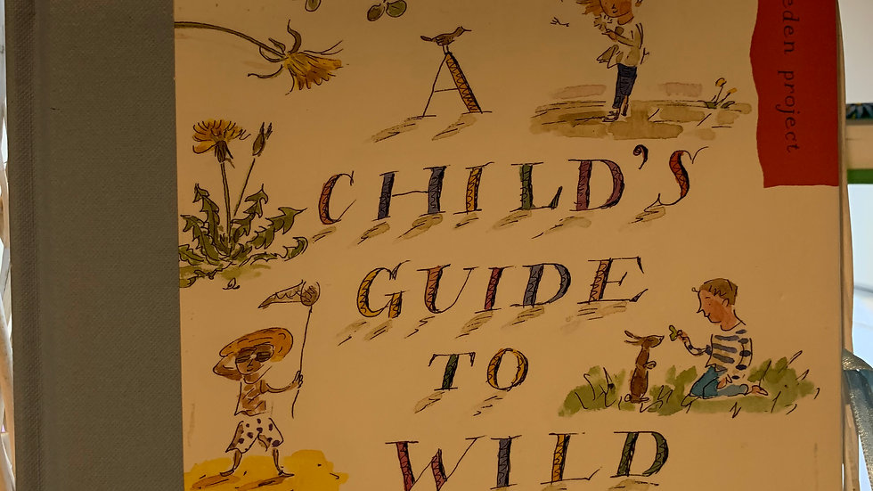 Eden Project Guide to Wild Flowers
