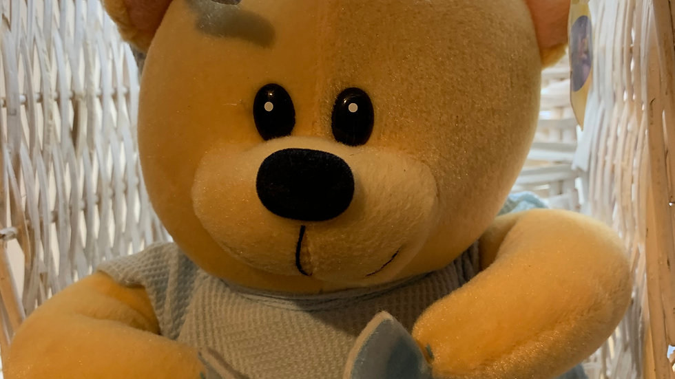 Night Time Teddy Plush
