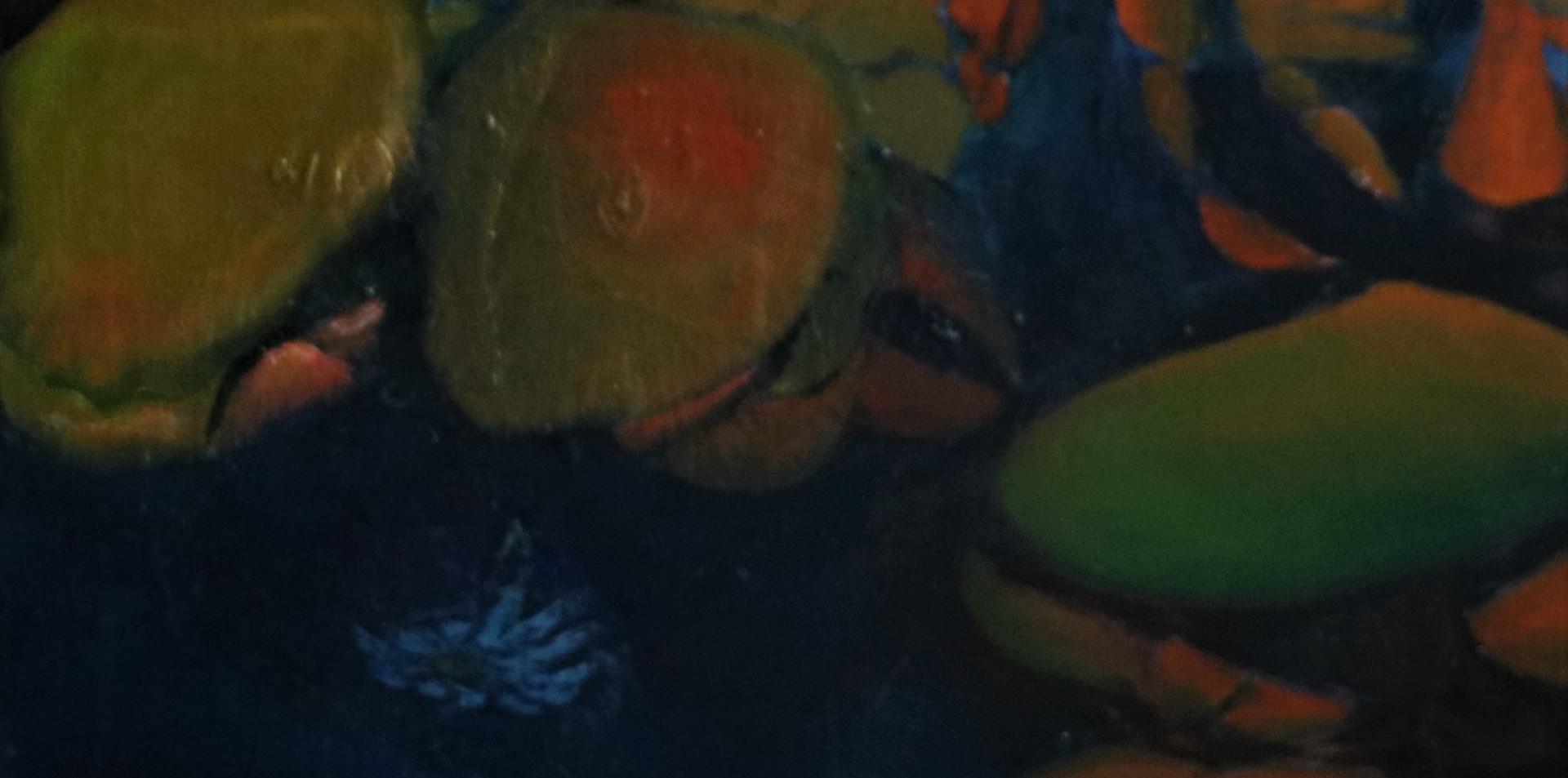 2017 - olie op doek 60 x 40 cm - De vangst