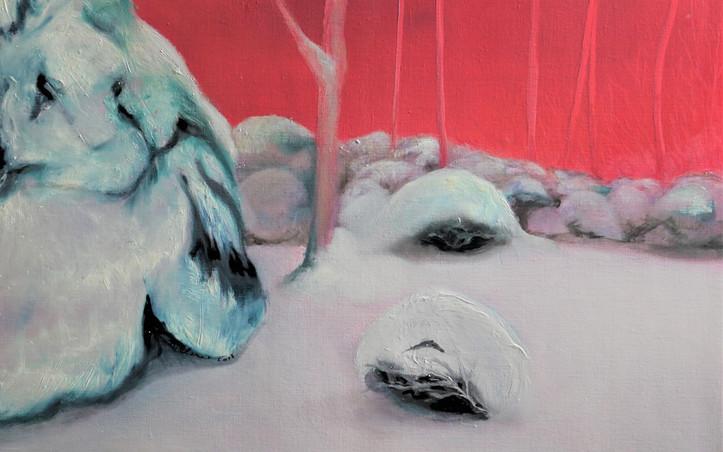 2016 - olie op doek 60 x 80 cm - Rode sneeuw