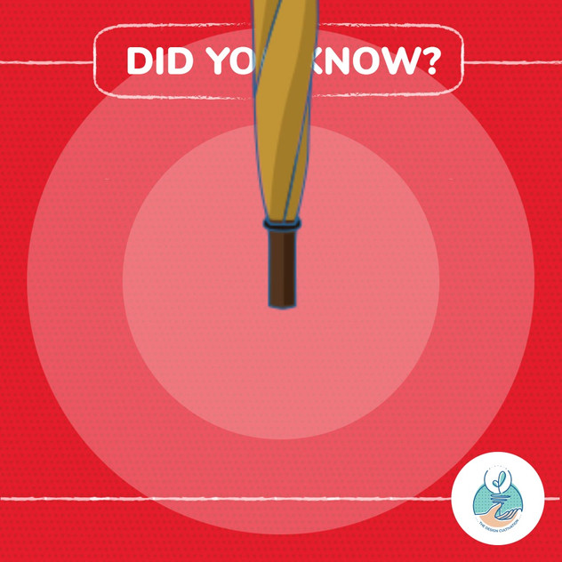 Did You Know? - Walking Stick Umbrella