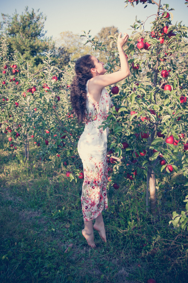 girl picking red apples