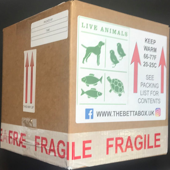 Small Box for UK Deliveries