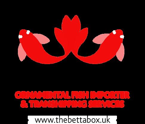 thebettabox_logo_edited.png