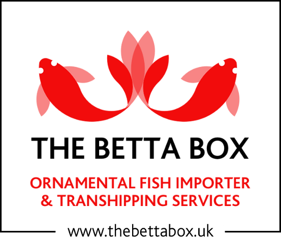 thebettabox_logo_edited.png