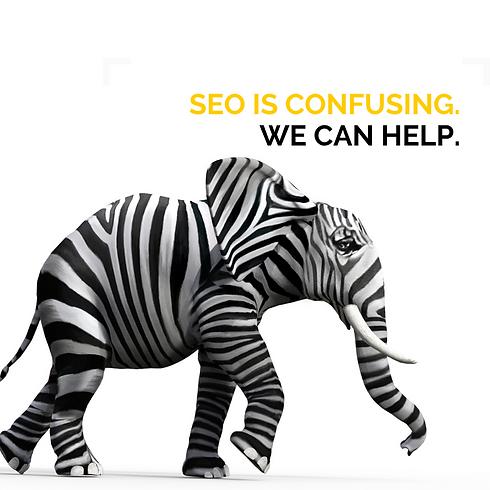 Copy of Fetch SEO Ads (3).png