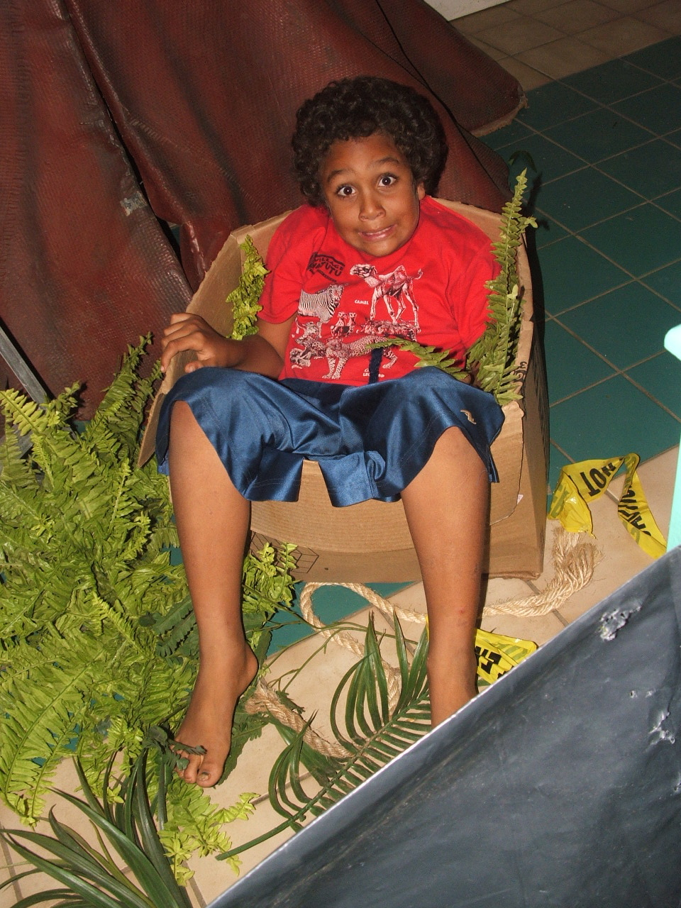 Jeb's in the fern box!