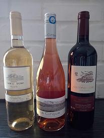 vin offert pour les fêtes.jpeg