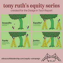 Equity vs Equality 3.png