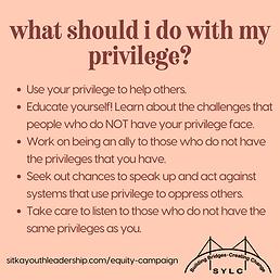 Privilege 3.png