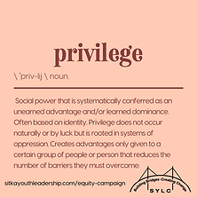 Privilege 1.png