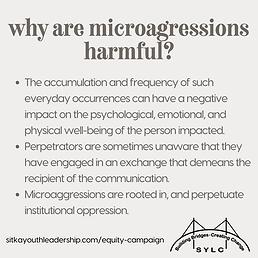 Microaggressions 2.png