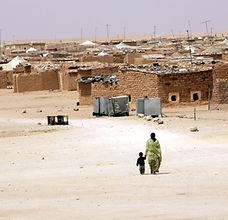 Migrant Sahara.jpeg