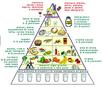 Psicoeducazione alimentare
