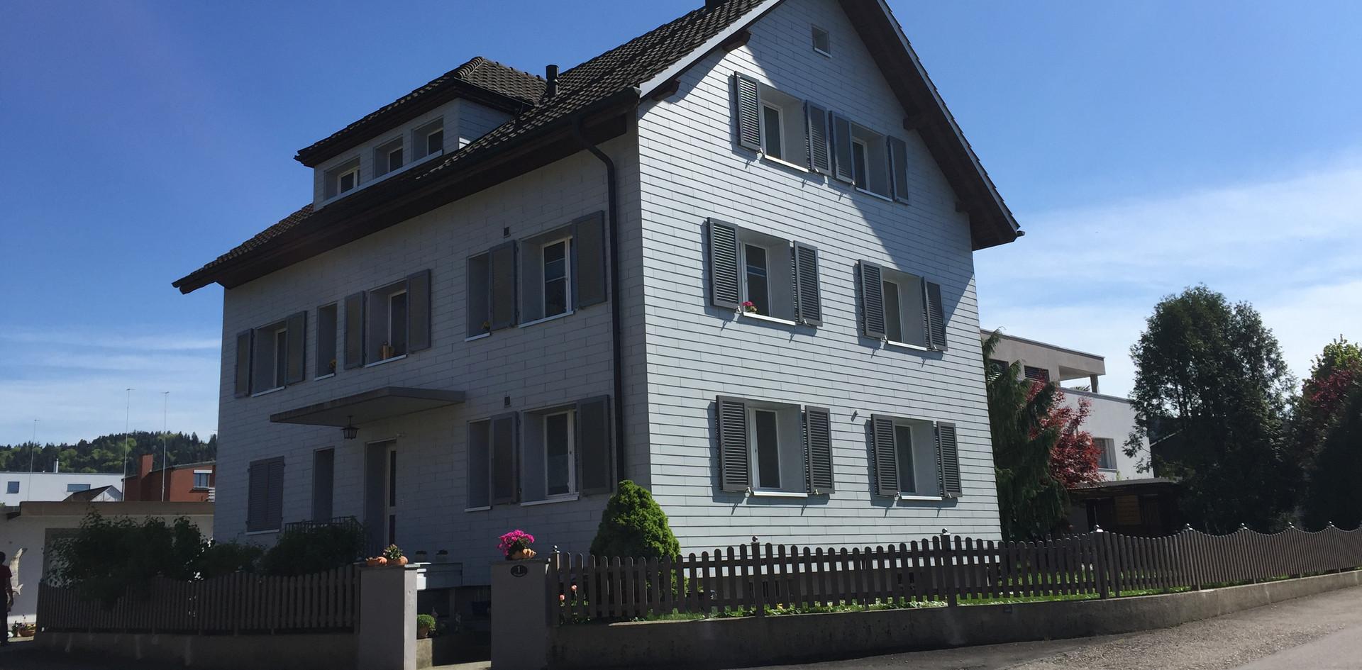 3-Fam-Haus Dagmersellen