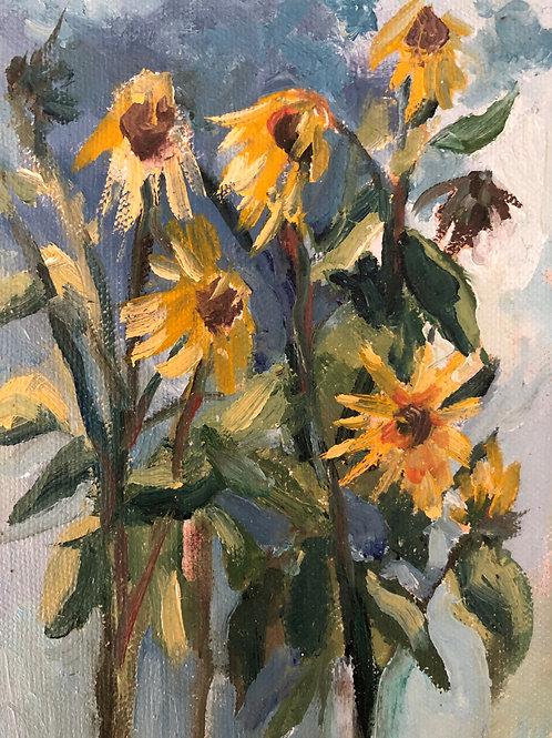 Sunflower Fiasco
