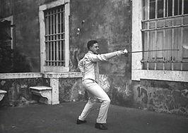 manuel fencing.jpg