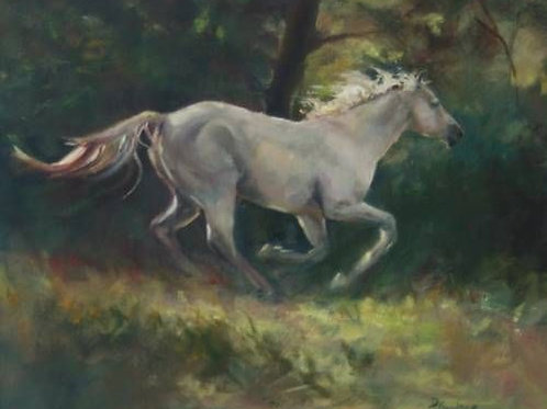 Tribute to a White Steed