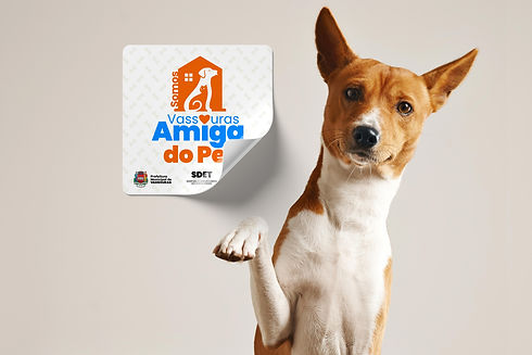 friendly-smart-basenji-dog-giving-his-pa