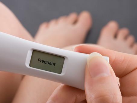 Diagnosticando a gravidez - parte 2