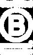 b corp logo white.png
