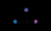 vision kids logo.png
