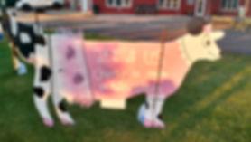 cow 9.jpg