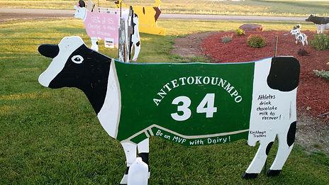 cow 7.jpg