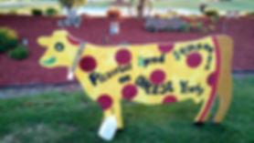 cow 12.jpg