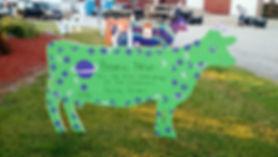 cow 13.jpg