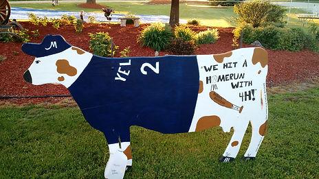 cow 8.jpg