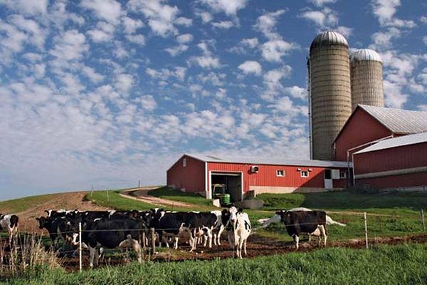 wi farm.jpg