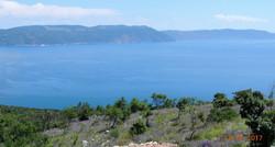 Blick zum Meer mit Salbei
