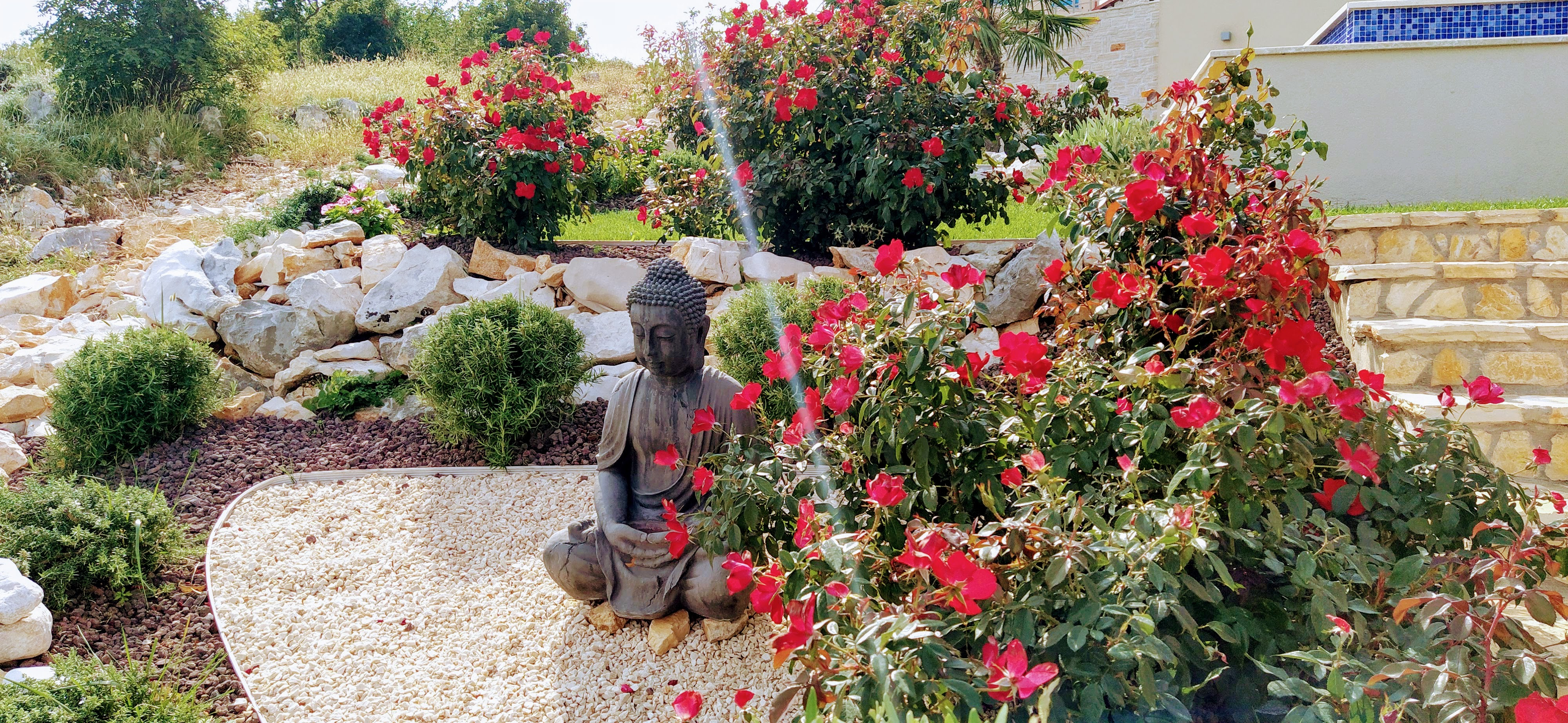 Buddha eingerahmt von Rosen
