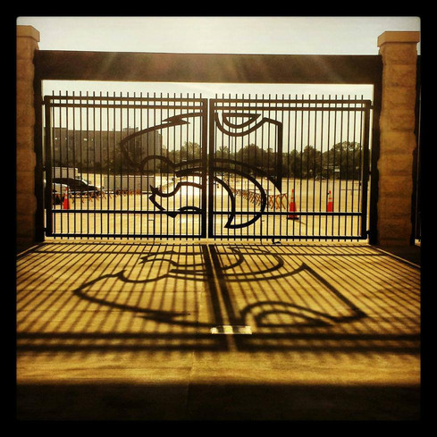 Painted Steel Gate with Plasma Cut Decoration