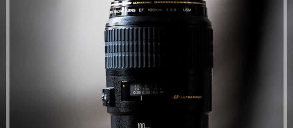 Canon EF 100mm f/2.8 USM Macro in der Hundefotografie