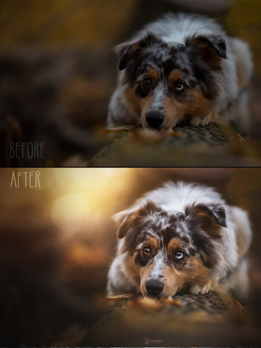 Before_After44.jpg