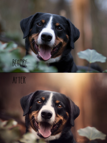 Before_After9.jpg