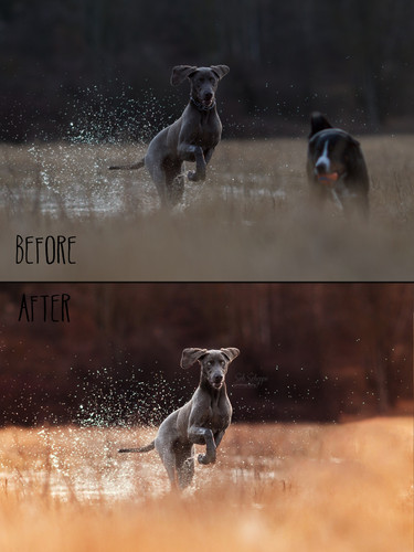 Before_After4.jpg