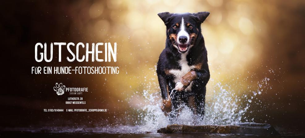 Gutschein- Fotoshooting.jpg