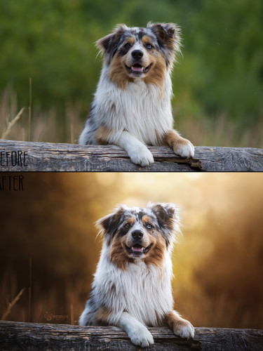 Before_After28.jpg