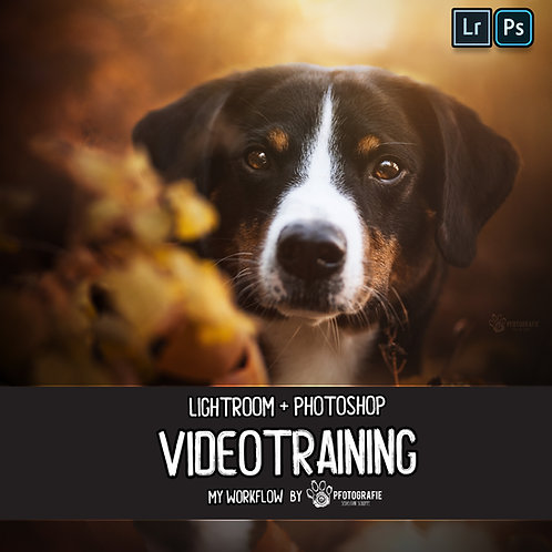 Videotraining - My Workflow (German Version)